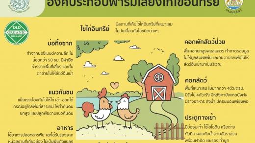 องค์ประกอบฟาร์มเลี้ยงไก่ไข่อินทรีย์