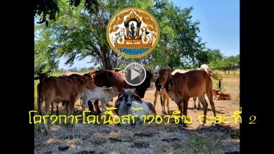 โครงการฟาร์มโคเนื้อสร้างอาชีพ ระยะที่ 2